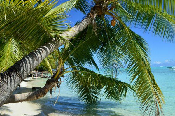 MYSSAGE Blog Bora Bora